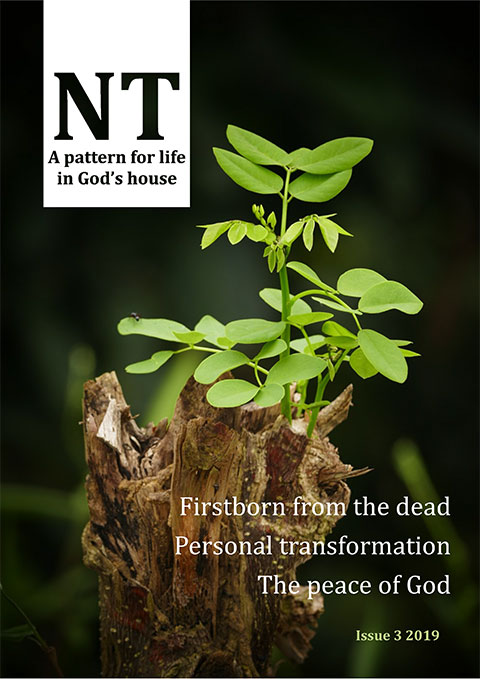 Cover - NT Issue 3 2019
